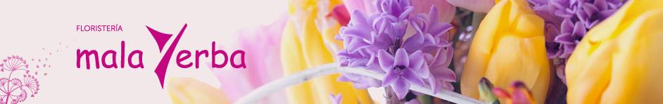 Blog Floristeria Malayerba